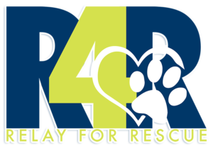 Relay For Rescue - Animal Welfare Denver Colorado